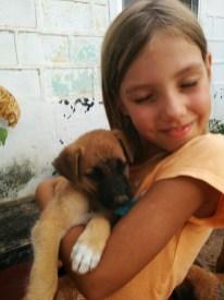 Op de school worden een paar keer per jaar puppies geboren. Extra reden om elke morgen weer naar school te willen!