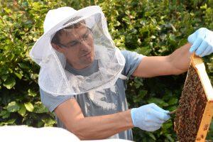 Bijenbaas imkerdag met Jeroen Vorstman