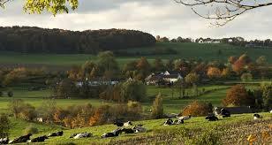 Bijenbaas locatie Sint Geertruid – Provincie Limburg