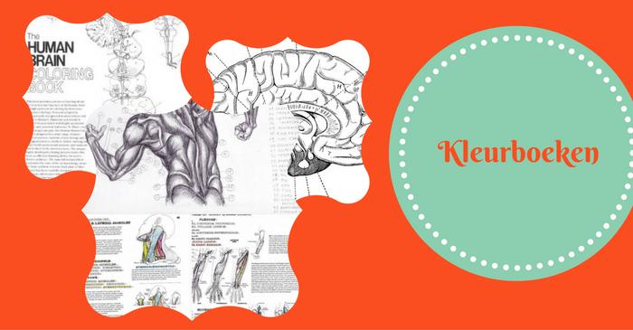 Kleurboeken voor studenten geneeskunde!