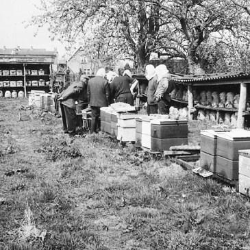 Vijfde Bijenstal voor onze vereniging