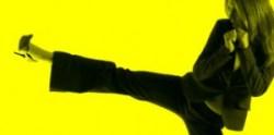 MarCom logo slice karate