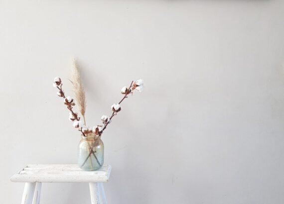 katoenbollen en pampasgras