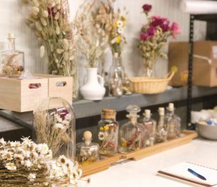 Daffies DIY shoplog