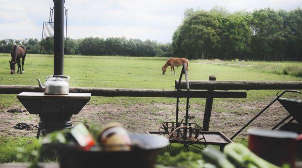 Bijzondere Overnachting Origineel Overnachten Slapen op boerderij De Lange Weide BoerenBed in Dwingeloo16