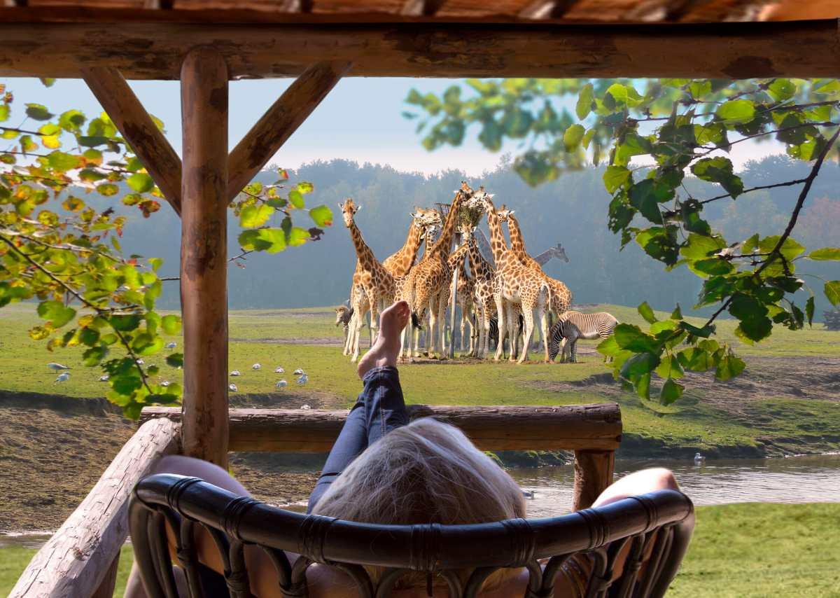 Slapen in Safari Resort de Beekse Bergen