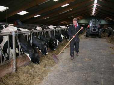 Bijzondere Overnachting Slapen BoerenBed Hoeve Meskenwier Akkrum Friesland13