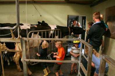 Bijzondere Overnachting Slapen bij de Boer Landgoed Volenbeek Ermelo de Veluwe11