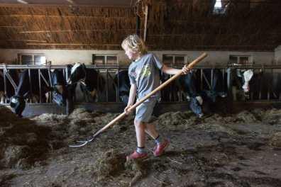 Bijzondere Overnachting Slapen bij de boer Boerderij de Kalverweide Steenwijk Drenthe20