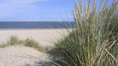 Bijzondere Overnachting Wellness Boerderij aan de kust Egmond aan zee11