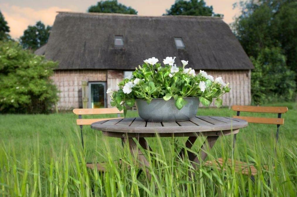 Bijzondere Overnachting Slapen in vakantiehuisje Drenthe Wilmsboo1