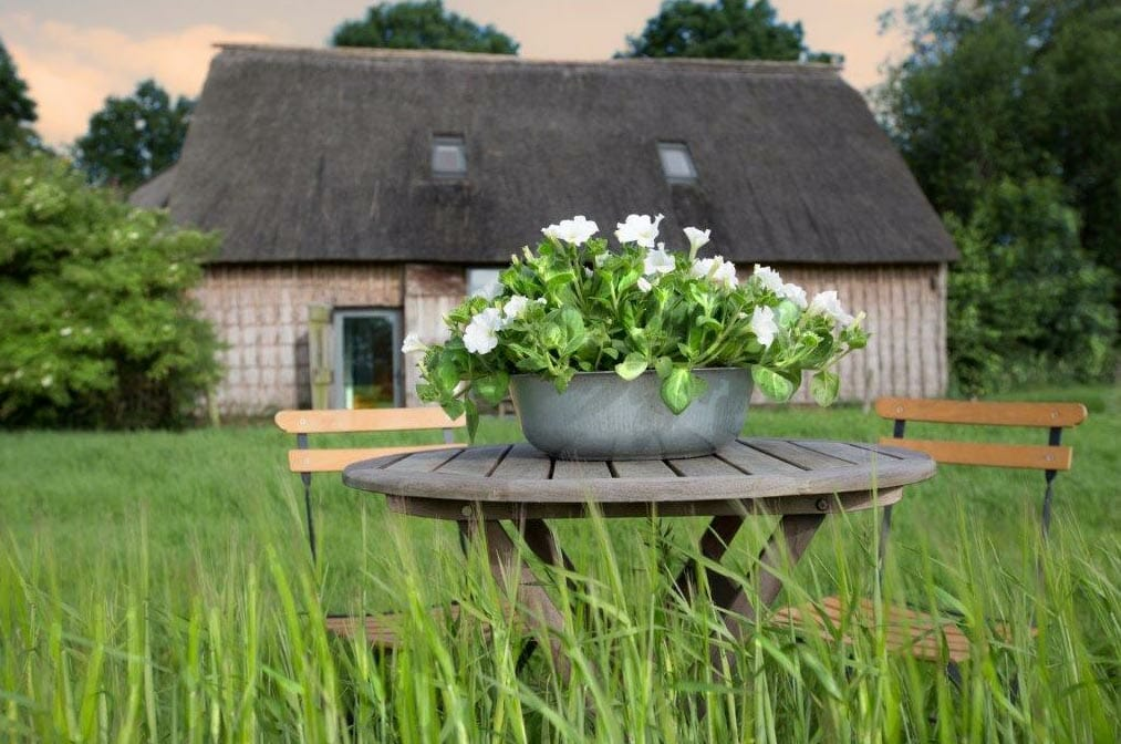 De Wilmsboo – Comfortabel en rustig vakantiehuisje in Drenthe
