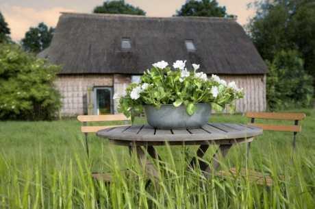 De Wilmsboo - Comfortabel en rustig vakantiehuisje in Drenthe