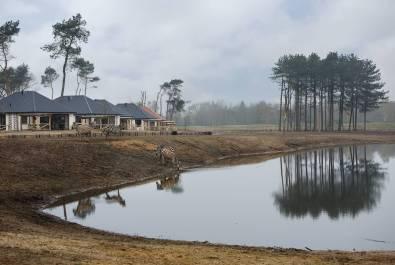 Bijzondere-Overnachting-Safaripark-Resort-De-Beekse-Bergen-Hilvarenbeek-Brabant34
