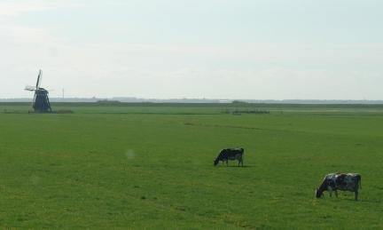Bijzondere Overnachting Origineel Overnachten Landelijk overnachten in deze Friese Lyklamastate13