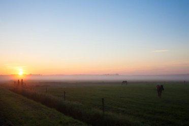 Bijzondere Overnachting Origineel Overnachten Slapen op een boerderij de Jobinghoeve in Grolloo met knuffelschuur in Drenthe4