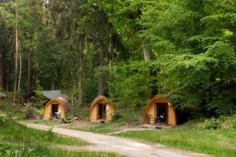 Slapen in het bos in een boshuisje Veluwe Buitenplaast Beekhuizen 11