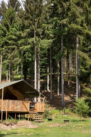 Slapen in het bos in een boshuisje Veluwe Buitenplaast Beekhuizen 20