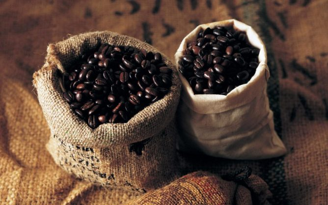 coffee bean@thebestcoffeeintheworld