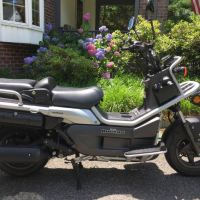 2006 Honda Big Ruckus PS250