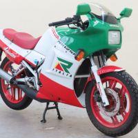 1987 Honda NS125R Adriatico