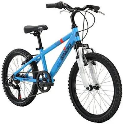 Diamondback Octane Kid Bike