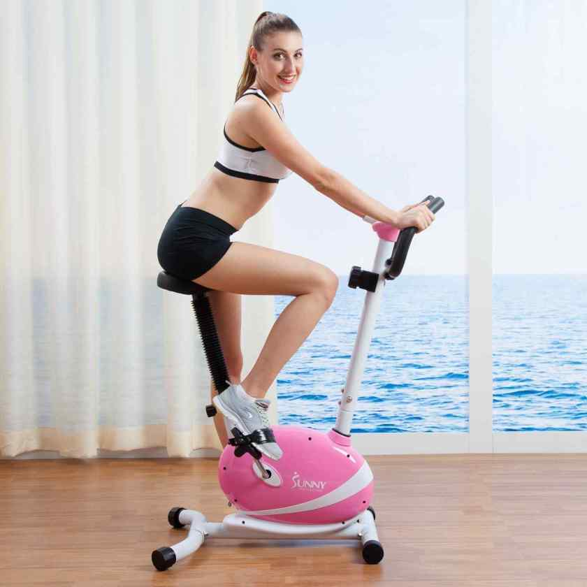 EXERPEUTIC 1110 300SR Foldable Recumbent Bike