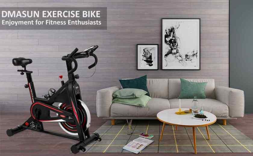DMASUN Indoor Cycling Bike