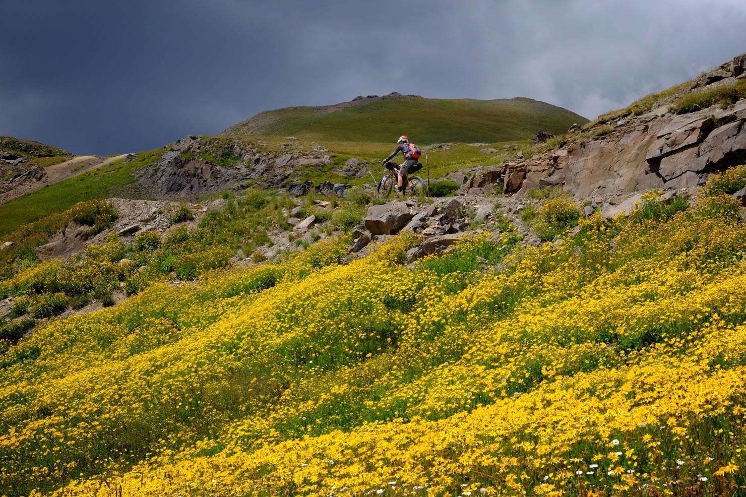 The Alpine Loop Colorado Bikepacking Com