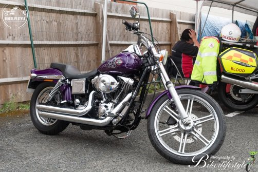 bike-fest-028