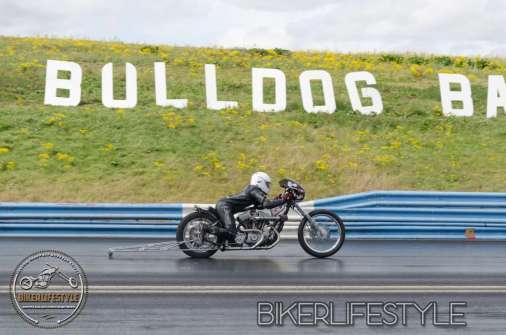 bulldog-bash-1759