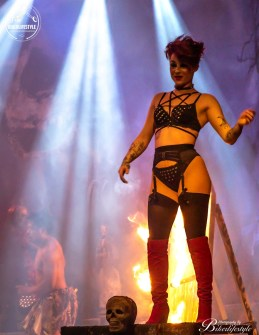 circus-of-horrors-465