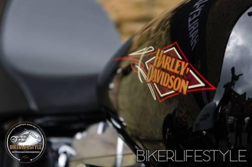 harley-tank-emblems-040
