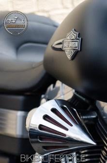 harley-tank-emblems-049