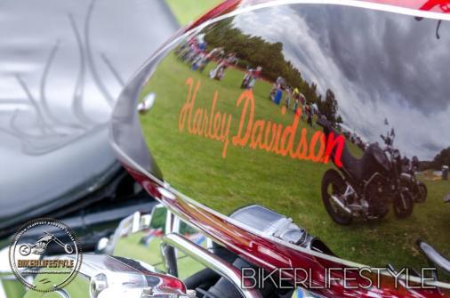 harley-tank-emblems-306