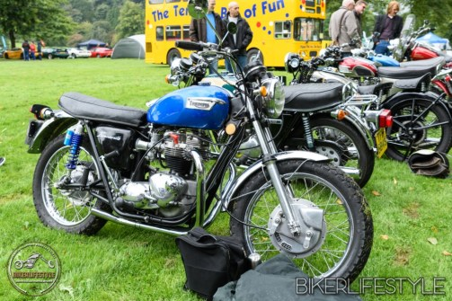 himley-classic-show-141