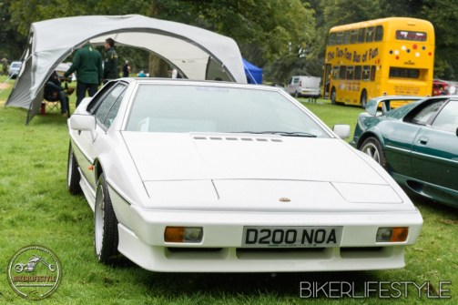 himley-classic-show-185