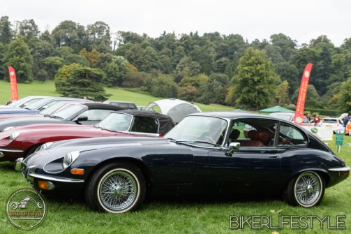 himley-classic-show-194