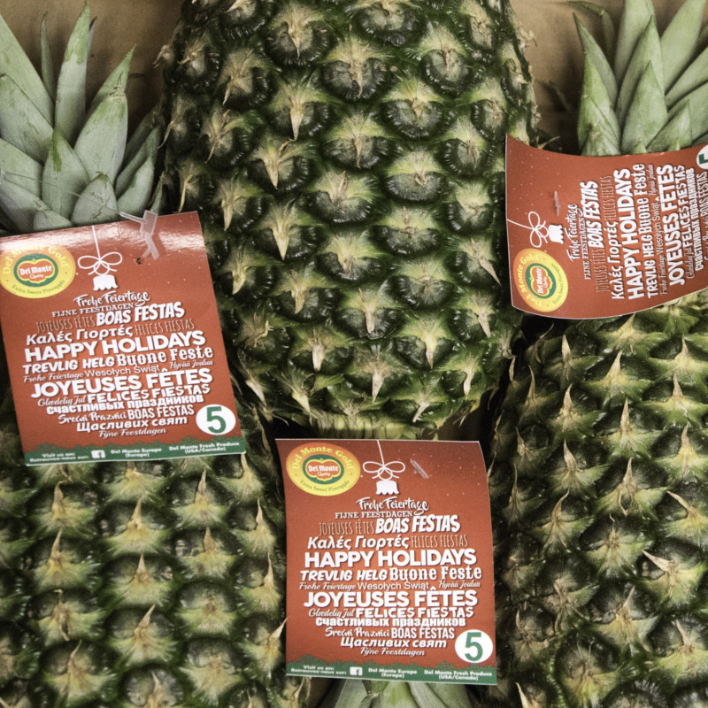 Piña frutas y verduras Bilcosa Mercabilbao