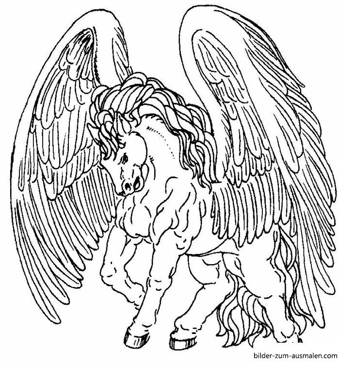 Ausmalbilder Einhorn Pegasus - Coloring and Drawing