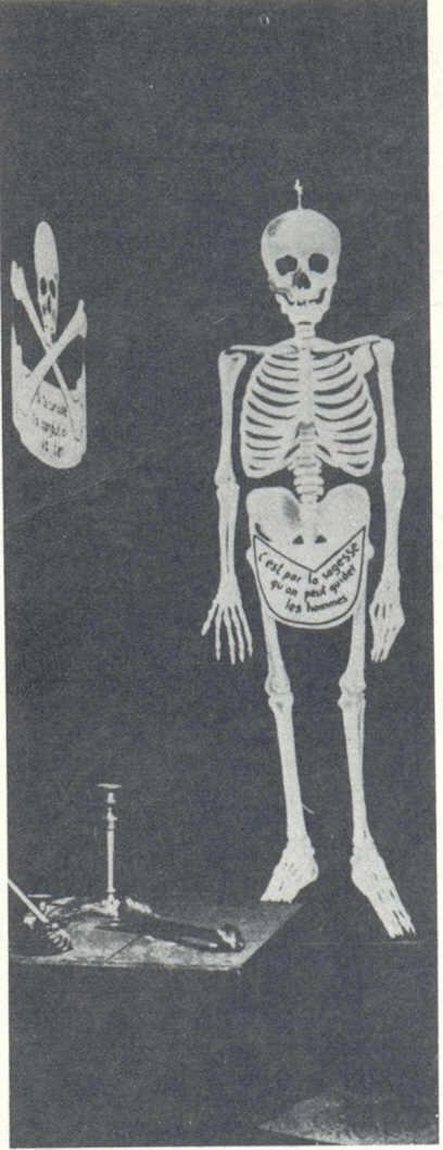 skeleton chair wake me up swing cost george w bush john kerry test the spirit skull bones contents