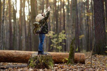 Foto: Maria Sbytova | Adobe Stock
