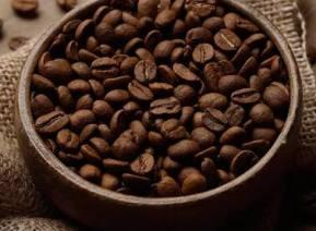 Kahve Nasıl Üretilir? Çeşitleri Nelerdir?