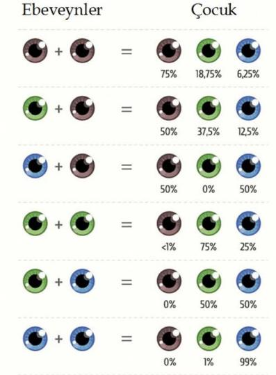 Bebeklerin Göz Rengi Ne Zaman Belli Olur ?