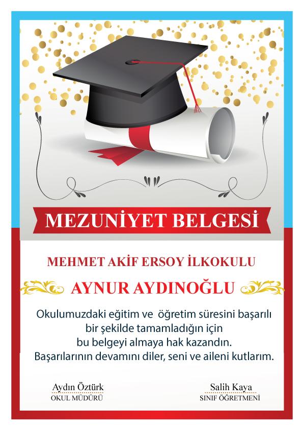 mezuniyet diplama SON11 - Mezuniyet Belgeleri