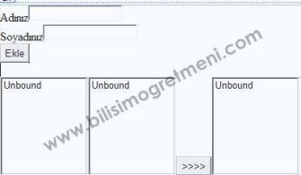 Asp.Net Örnekleri – Listbox'a Eleman Ekleme, Seçme ve Silme