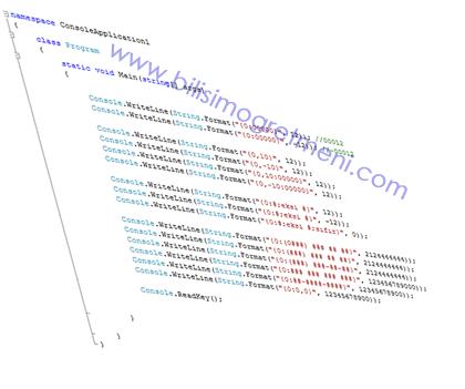 Visual Studio C# Dersleri – String.Format Fonksiyonu 1