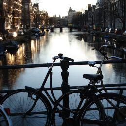 nl2008_04