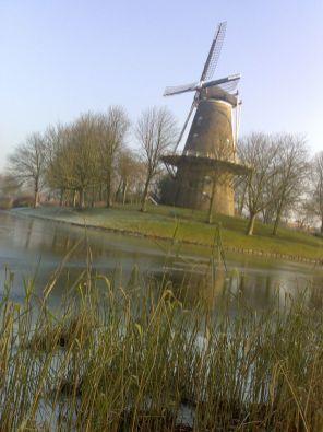 nl2008_07