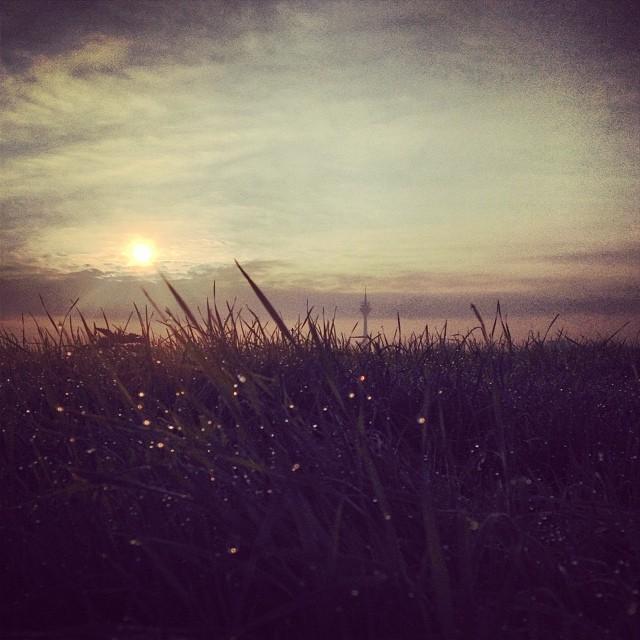 """Morning has broken, like the first morning…"" Trällerte er vor sich hin ;-)"